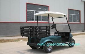 Two Seats Electric Golf Carts With Rear Box (GLT2021OX)