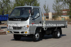 T-King 1 Ton Diesel Cargo Truck/Light Truck pictures & photos