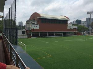 Non Infill Grass, Recyclable Football Artificial Grass (V30-R) pictures & photos