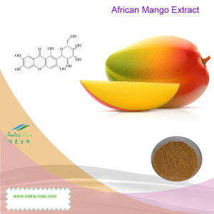 100% Natural African Mango Extract (Mangiferin 20%~95%, 4: 1~20: 1)