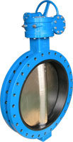 U Type Butterfly Valve with Gear Operator pictures & photos