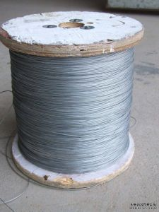 Stainless Steel Wire Ropes for Conveyer Belt