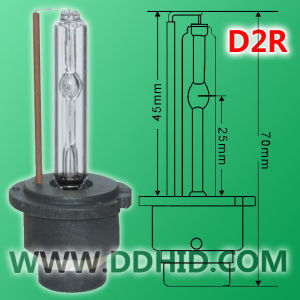 HID Xenon Bulb Lamp/Light (D2R)