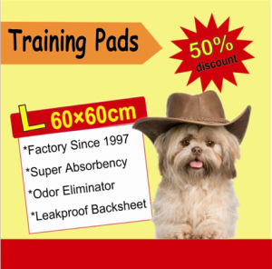 """Puppy Wee Wee Training Pad 23""""*24"""" pictures & photos"""