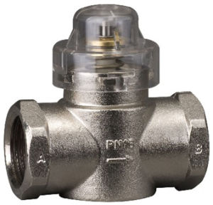Water Motorized Brass Valve (CKF7325T-110) pictures & photos