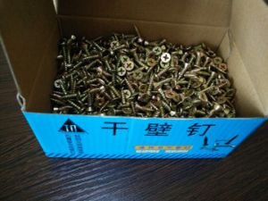 OEM Customized Stainless Steel 304 316 Drywall Screw pictures & photos