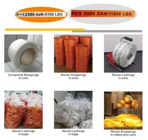Polyester Cord Strap, Cord Strap Tensioner, Cord Strap pictures & photos