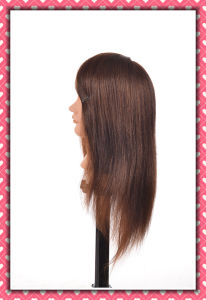 Human Hair Mannequin Head 22inches pictures & photos