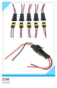 2 Pin Way Car Waterproof Electrical Connector Plug pictures & photos