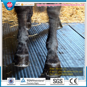 Rubber Stable Tiles/Cow Rubber Mat/Agriculture Rubber Matting pictures & photos