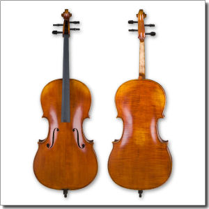 A Grade Professional Hand Made Advanced Cello (CH200) pictures & photos