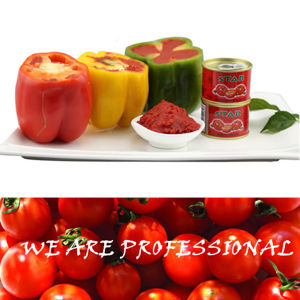 Double Concentrate Tomato Paste for Dubai From Hebei Tomato Industry Co Ltd pictures & photos