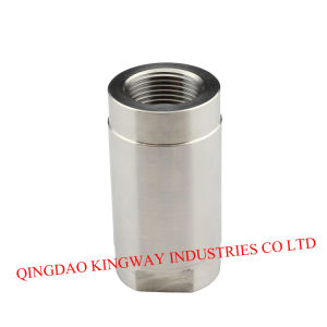 1-PC Threaded Spring Vertical Check Valve. pictures & photos