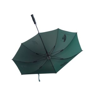 High Quality 30inch Auto Open Windproof Golf Umbrella (AU010) pictures & photos