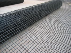 Black Color Plastic Flat Mesh pictures & photos