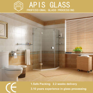 10mm Frameless Shower Door Frosted Tempered Glass /Bathroom Toughened Glass with Notch / Cutout/Slot/Groove/Drilling Holes pictures & photos