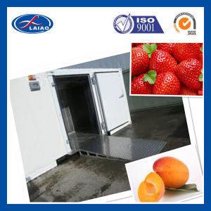 Good Quality Cold Room Storage for Strawberry pictures & photos