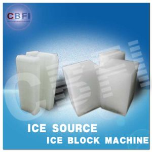 CE and SGS Certification Containerized Block Ice Plant pictures & photos