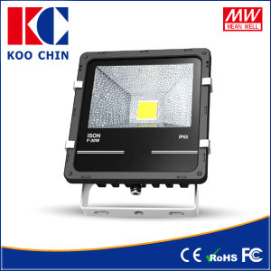 High Power 30W IP65 LED Flood Light