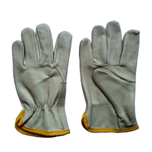 Ab Grade Pig Skin Protective Safety Labor Gloves for Drivers pictures & photos
