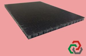 Thermoplactic Honeycomb Panel