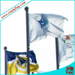 Digital Printing National Flags, Polyester Country Flags pictures & photos