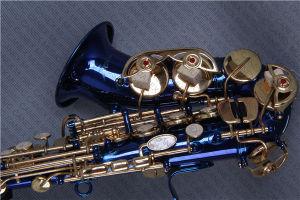 Saxophone Soprano / Colour Saxophone/ Saxophone Junior (SAS-C) pictures & photos