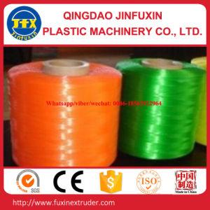 Pet Filament Extrusion Line pictures & photos