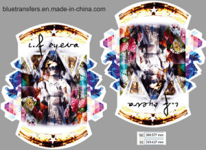 Printed Heat Transfer Paper for Clothings (2PCS in one sheet) pictures & photos