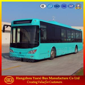 7 - 12 Meter, NGV LNG CNG Bus