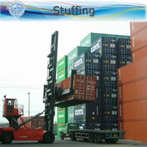 Ocean Transportation / Consolidation / Freight Forwarder From China to Africa pictures & photos
