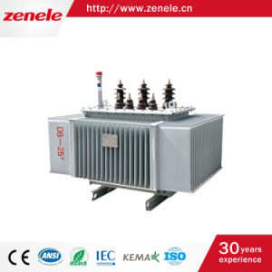 Three-Phase Oil-Immersed Amorphous Alloy Power Distribution Transformer pictures & photos