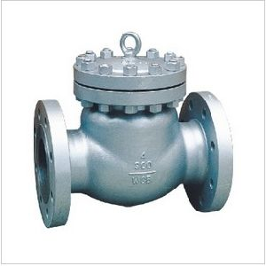 Class 300 Cast Steel Double Flanged Swing Check Valve