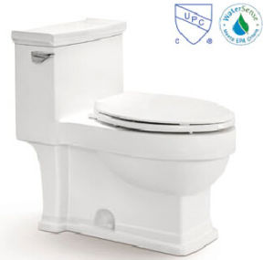Canada /American Style Toilet CE-T2152m pictures & photos