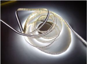 24V 3014 168LEDs IP20 Cool White LED Strip with UL Certificate Two Years Warranty (SP-LS24V3014)