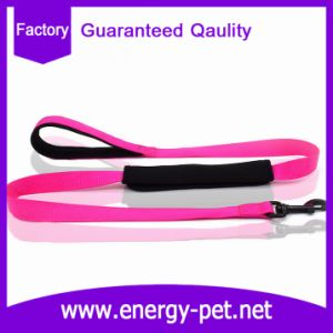 Cheap Personalized Pet Collar and Leash