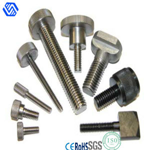 Thumb Screw, Computer Screw with Competitive Price pictures & photos