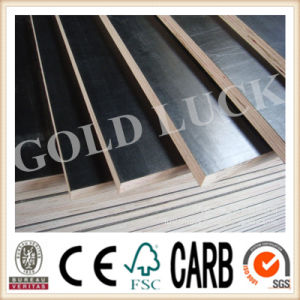 Qingdao Gold Luck Film Faced Plywood Bridge Template (QDGL150113) pictures & photos