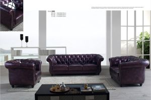 Living Room Genuine Leather Sofa A666 pictures & photos