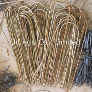 Natural U Bamboo Sticks with High Quality pictures & photos