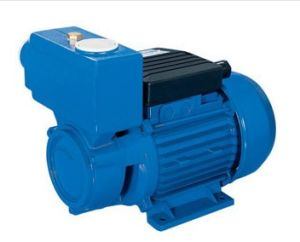 Self-Priming Peripheral Pump (MQP60)