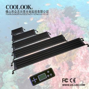 12/24/36/48/60 Inch LED Aquarium Light Series