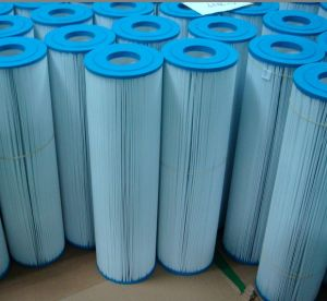Pool&SPA Filter Cartridge (OEM FILTER) pictures & photos
