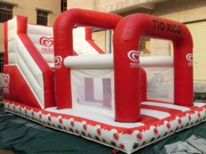 Strawberry Inflatable Bouncy Slide for Party (CYSL-593) pictures & photos