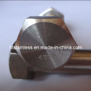 904L 1.4539 Hex Head Bolt pictures & photos
