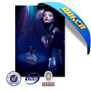 Professional Bulk 3D Poster Printing pictures & photos