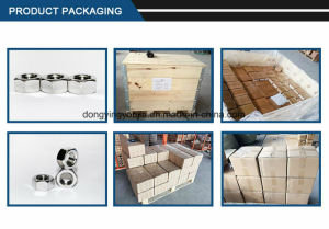 Stainless Steel Hexagon Nut Fastener pictures & photos