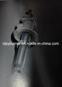 The Olpy Wb1000 Industrial Furnace Nozzle pictures & photos