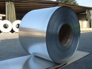 Prepainted Galvanized Steel Coil (factory price) pictures & photos