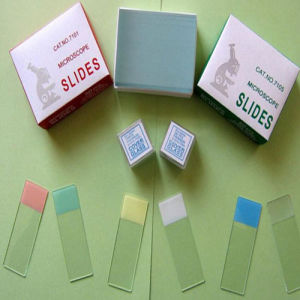 Microscope Slides and Cover Glass pictures & photos